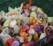 Aubergine das Unterschätzte Gemüse