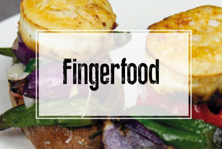 Seminarheft Fingerfood